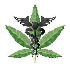 Medical Marijuana Graphic - Boulder Colorado Medical Marijuana Lawyer Phil Clark