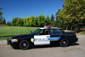 Police car parked on a road in front of a green lawn with a blue sky
